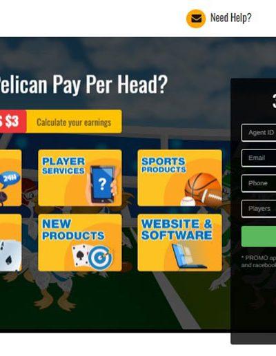 PelicanPPH Pay Per Head Review